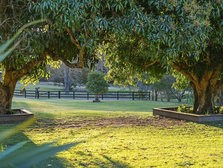 Tinbeerwah Road, Tinbeerwah QLD 4563, Image 2