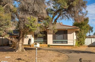 Picture of 26 Quinn Street, Tamworth NSW 2340