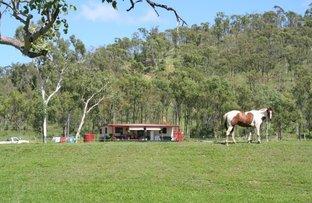 288 Old Coach Road, Majors Creek QLD 4816