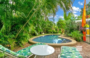 Picture of 3 Oliva Street, Palm Cove QLD 4879