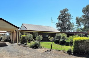 Picture of 1740 Finlay Road, Tongala VIC 3621