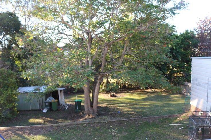 121 Bungay Road, Wingham NSW 2429, Image 2