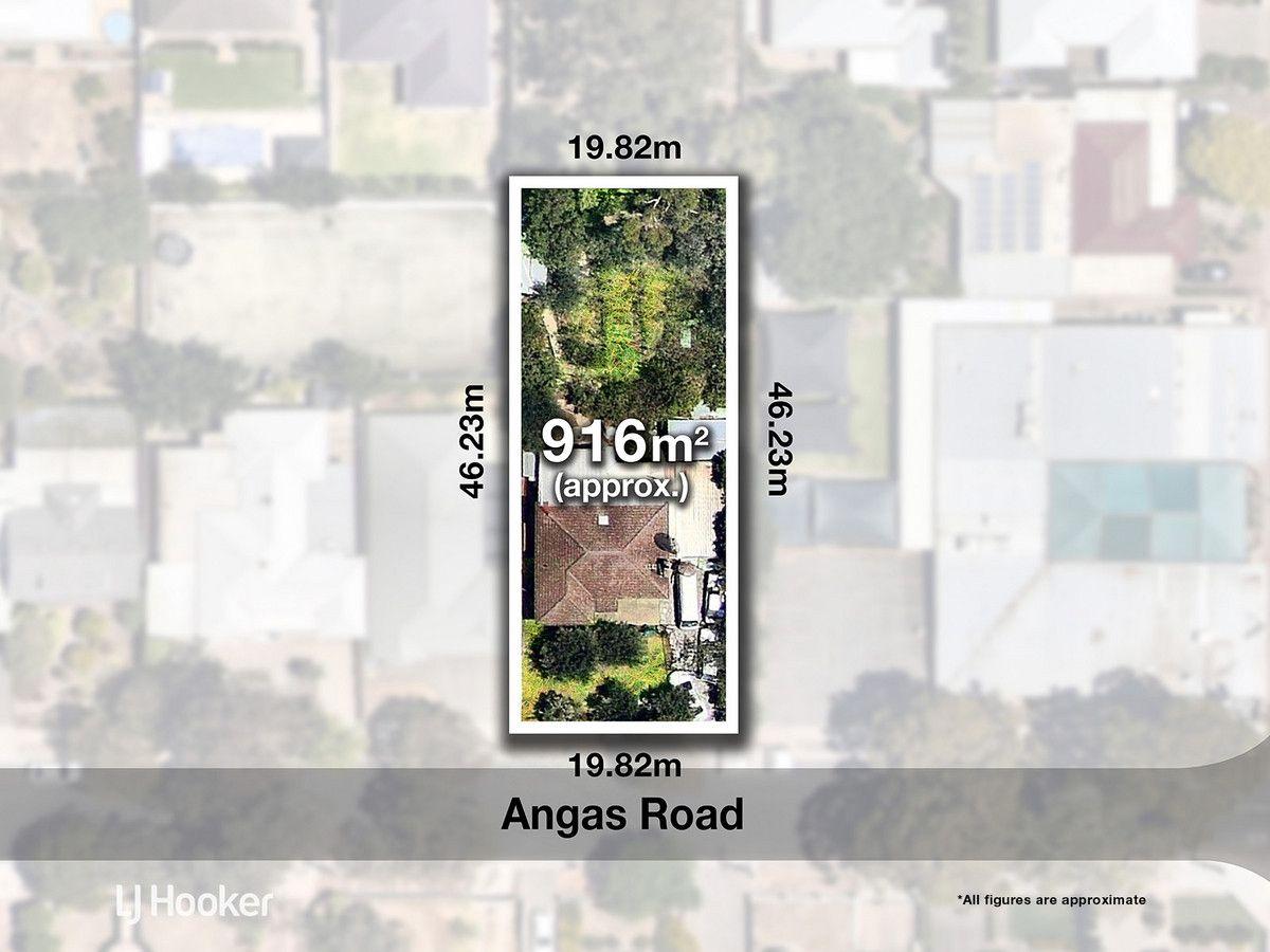 2 Angas Road, Magill SA 5072, Image 0
