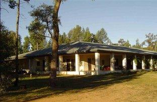Picture of Mandelsloh 1506 Werah Creek Rd, Wee Waa NSW 2388