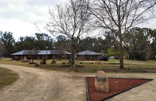 Picture of 214 Caves Rd, Stanthorpe QLD 4380