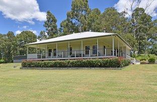 Picture of 54 Jacaranda Gr, Elrington NSW 2325