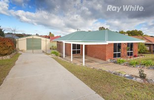 Picture of 12 Kennedia Street, Thurgoona NSW 2640