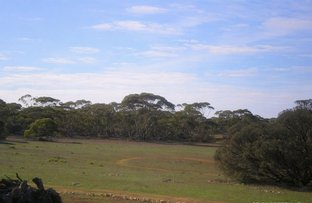 Picture of 19 Goondooloo Road, Bowhill SA 5238