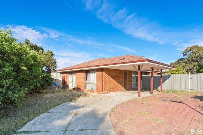 Picture of 29 Firetail Court, SEVILLE GROVE WA 6112