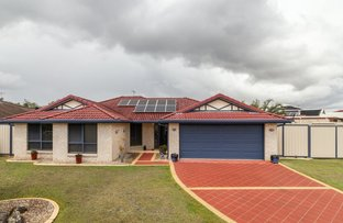 Picture of 4 Isabella Court, Heritage Park QLD 4118