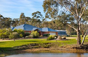 Picture of 9 Hamiltons Lane, Muckleford VIC 3451