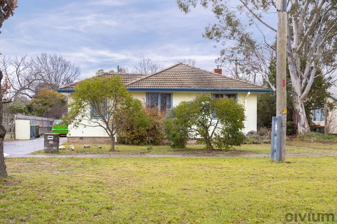 Picture of 23 Scrivener Street, O'CONNOR ACT 2602