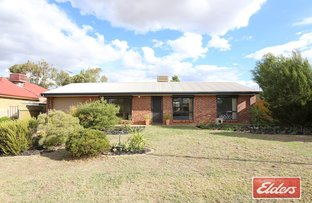 Picture of 11 Cook Street, Nuriootpa SA 5355