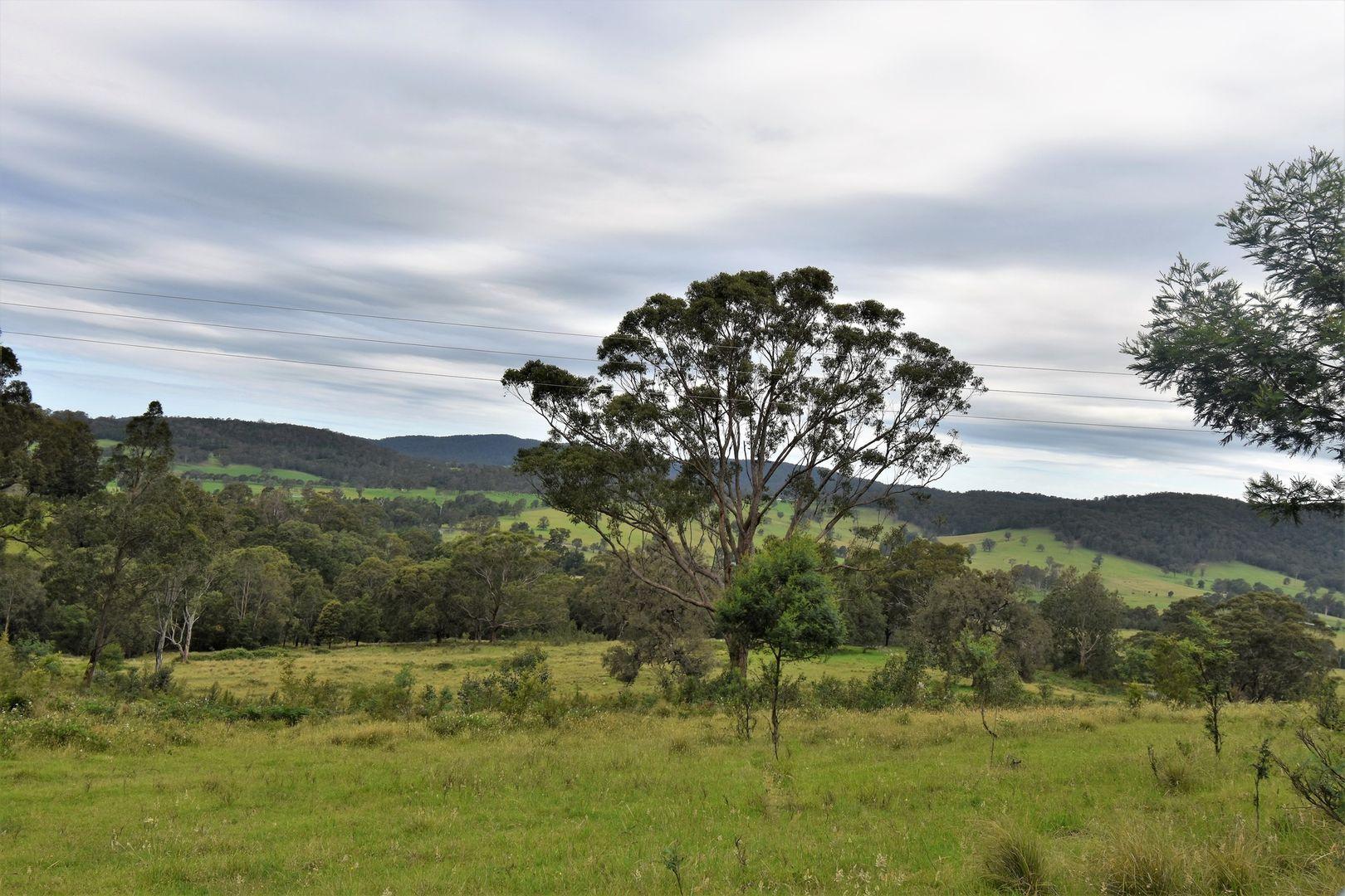 Cobargo Bermagui Road, Cobargo NSW 2550, Image 1