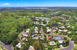 Picture of 3 Wren Crescent, Buderim QLD 4556