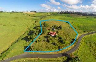 Picture of 79 Whisky Creek Road, Dorrigo NSW 2453