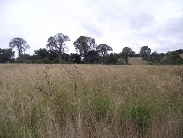 Goomeri QLD 4601, Image 0