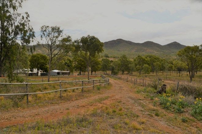 Picture of 47 Preston Road, BOULDERCOMBE QLD 4702
