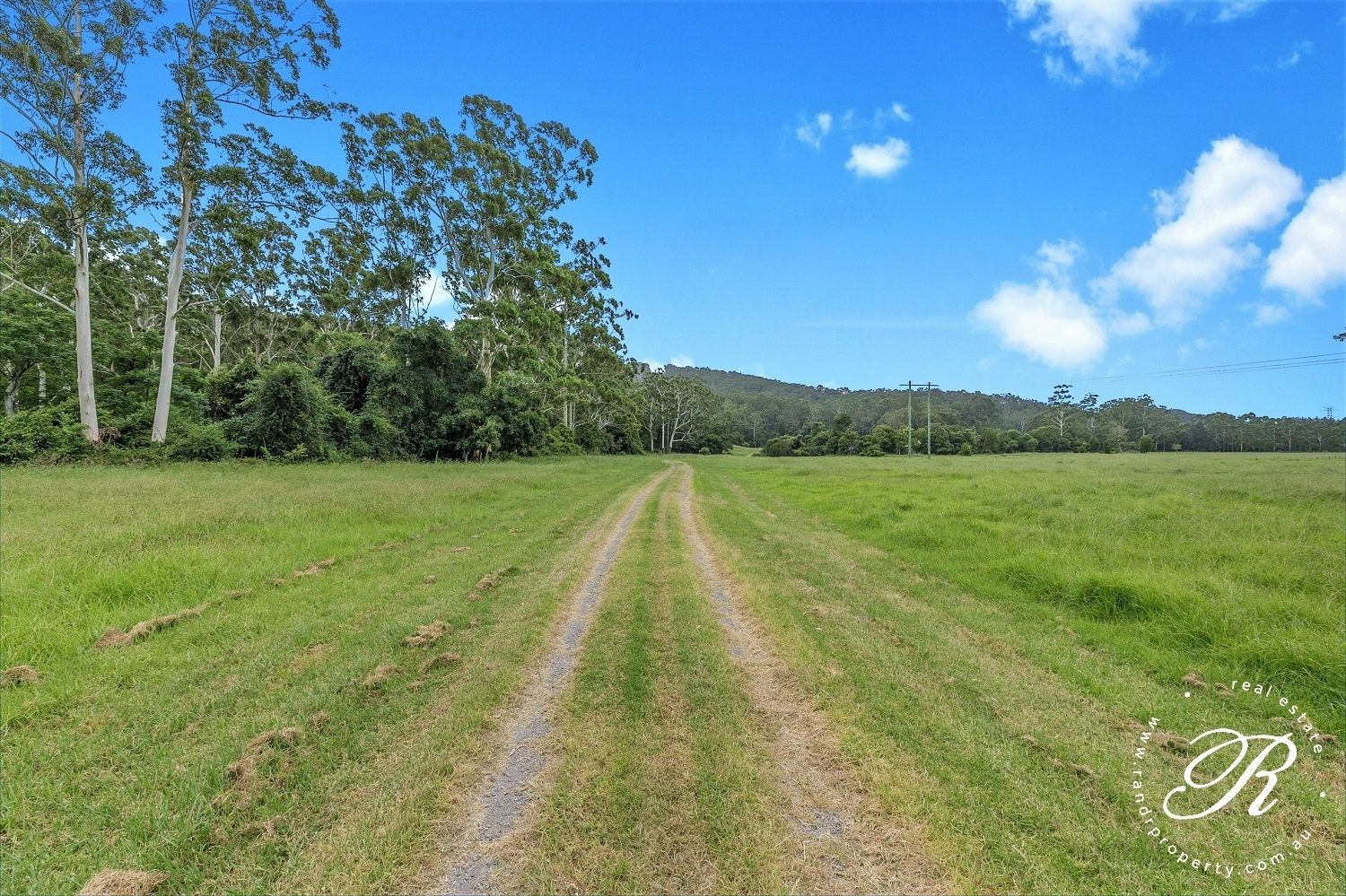 124 Dog Hole Road, Stockrington NSW 2322, Image 2
