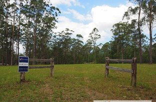 Lot 2 Kemps Access Road, Collombatti NSW 2440