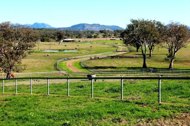 Picture of 501 Christmas Creek Road, TABOOBA QLD 4285