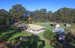 231 Pine Forest Road, Tomerong NSW 2540