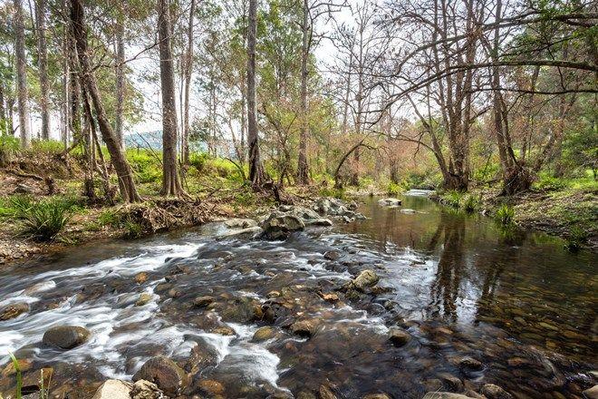 Picture of 116 Mulligans Lane, KIMBRIKI NSW 2429