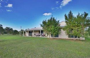 43-49 Leray Road, Elimbah QLD 4516