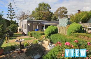 Picture of 10 Ti-Tree Drive, Ansons Bay TAS 7264