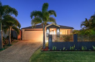Picture of 17 Nicola Way, Upper Coomera QLD 4209