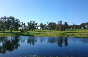 Picture of 896 Red Gully Rd, Red Gully WA 6503