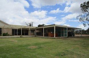Picture of 44 Davidon Road, Barmera SA 5345