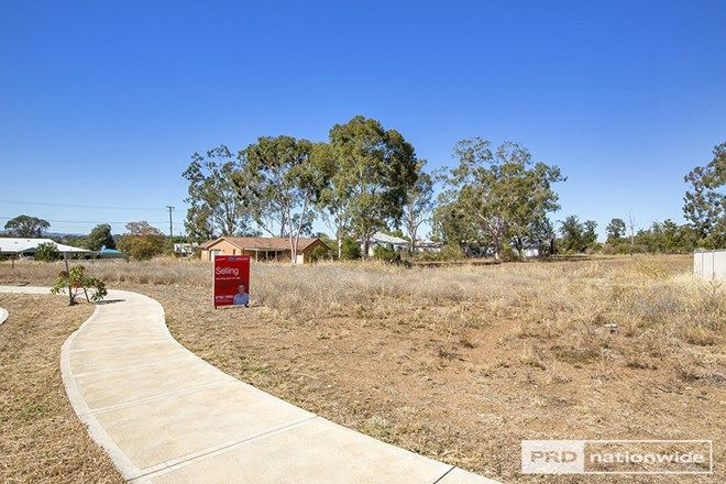 Picture of 20 Appaloosa Place, TAMWORTH NSW 2340