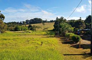 Picture of Lot 8 Mundey Road, Malanda QLD 4885