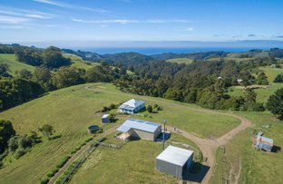 1060 Wild Dog Road, Apollo Bay VIC 3233