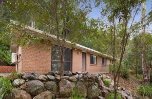 Picture of 44 Eppalong Street, The Gap QLD 4061