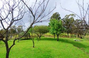 Picture of 3 Hazelnut Drive, KIAH Via, Eden NSW 2551