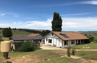Picture of 14 Bloomfield Street, Dalgety NSW 2628