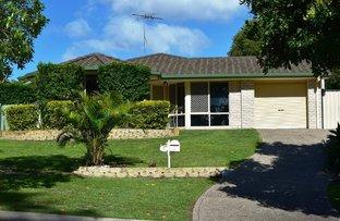 Picture of 7 Ibis St, Loganlea QLD 4131