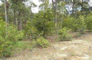 24 Bunderra Circuit, Lilli Pilli NSW 2536