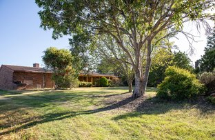 Picture of 424 Mt Lindesay Road, Tenterfield NSW 2372