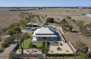 Picture of 24 Wilkey Road, Edithburgh SA 5583