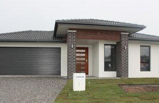 Picture of 21 Lindeman Circuit, Pimpama QLD 4209