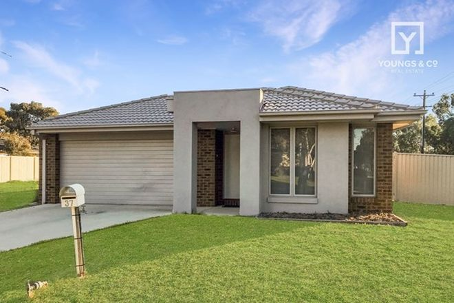 Picture of 37 Tyquin St, SHEPPARTON VIC 3630