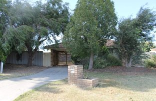Picture of 8 Wills Court, Cooloongup WA 6168