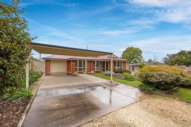 Picture of 6147 Mansfield - Whitfield  Road, WHITFIELD VIC 3733