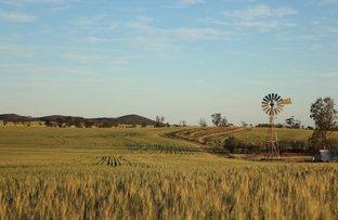 Picture of Buckleboo Hundred Line Road, Kimba SA 5641
