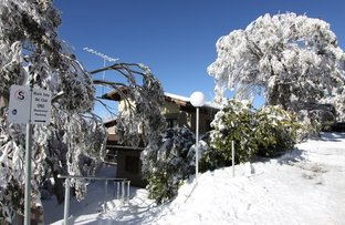 Picture of 14/37 The Avenue, Mount Buller VIC 3723
