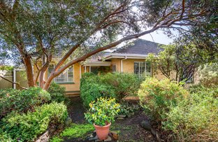 Picture of 17 Coolah Terrace, Marion SA 5043
