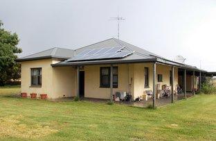 Picture of 388 Cooper Road, Bordertown SA 5268